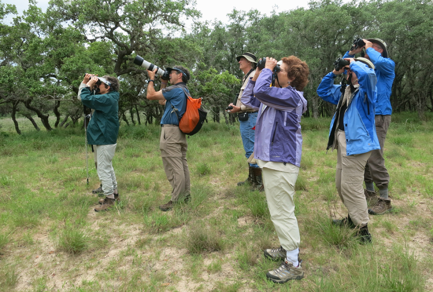 "GGAS member post on ""A South Texas Adventure"" 2015 Nature Trip"